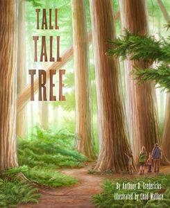 Tall Tall Tree